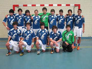 JUVENIS - 2012 / 2013
