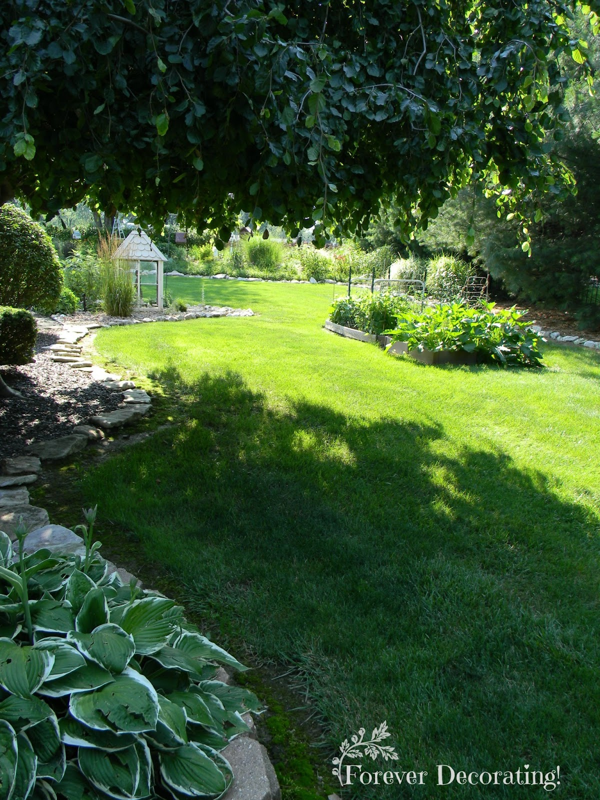 Forever Decorating!: My House & Gardens ~ Part I