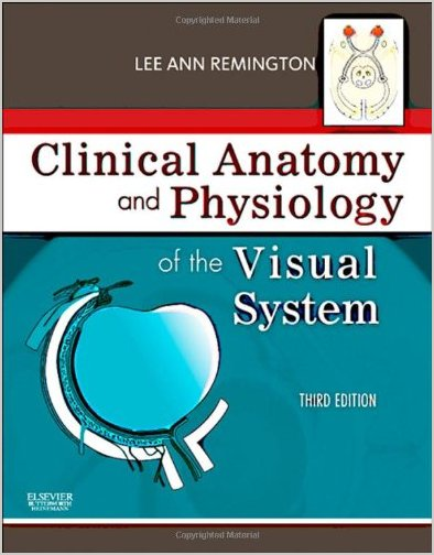 Clinical Anatomy and Physiology of the Visual System 3rd Edition pdf