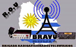 APORTE INFORMATIVO PARA LA : BRIGADA DE RADIOAFICIONADOS VOLUNTARIOS URUGUAYOS - B.RA.V.U
