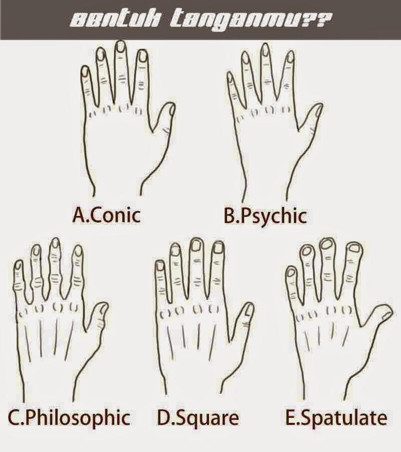 Bentuk Tangan