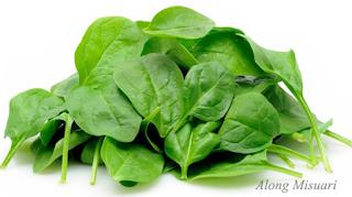 Makanan Wajib Untuk Mengelak Migraine