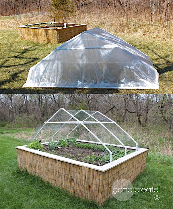 Raised garden bed with a convertible roof! Plastic protects plants in cold months and chicken wire protects from deer. | Visit I Gotta Create!