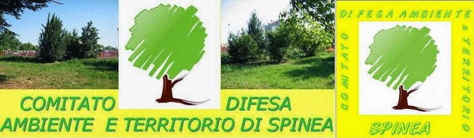 Comitato Difesa Ambiente e Territorio di Spinea