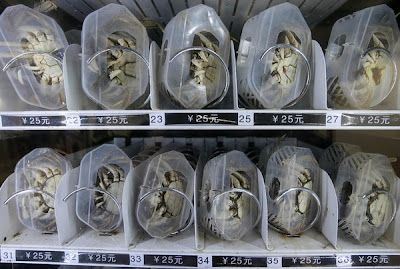 hairy crab, vending machine