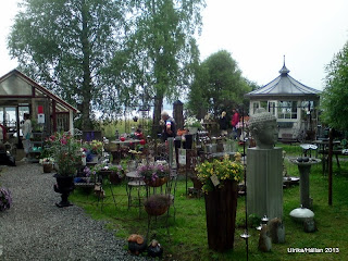 Blåeld i Tavelsjö