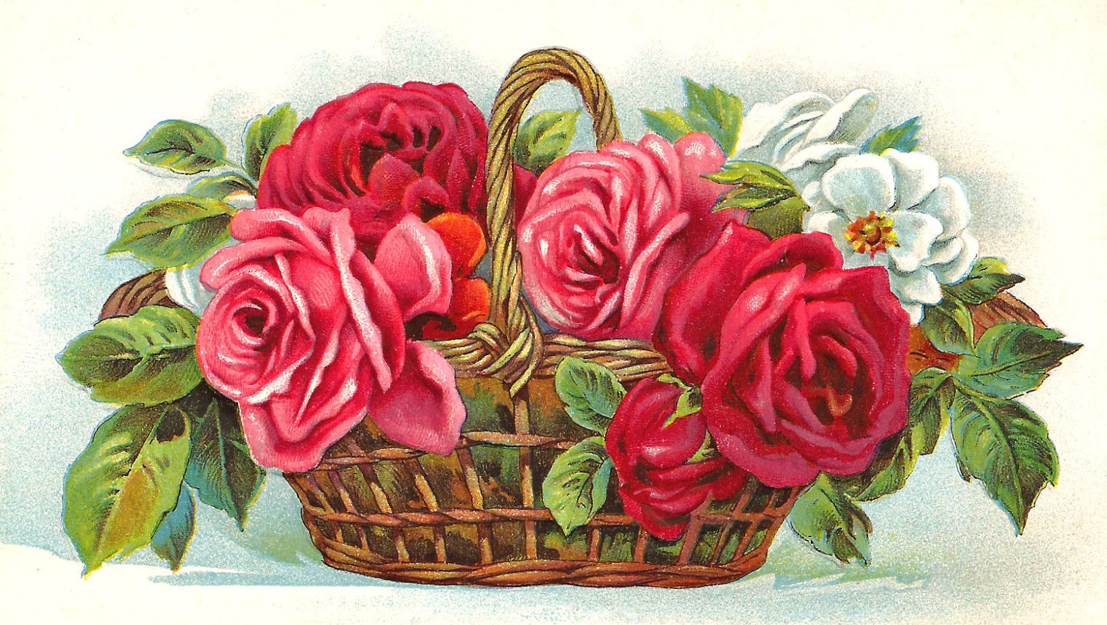 free clipart roses flowers - photo #41