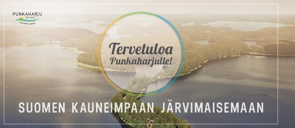 Tervetuloa Punkaharjulle Suomen kauneimpaan maisemaan