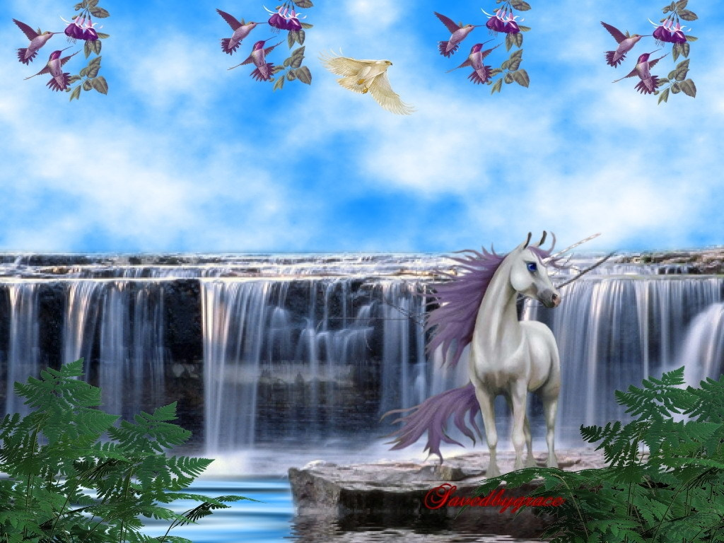 unicorns with wings and rainbows wallpaper