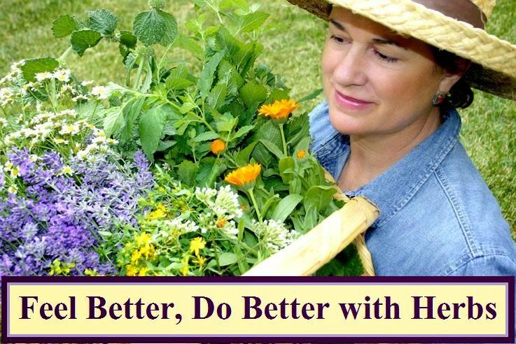 Feel Better, Do Better with Herbs