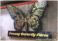 Butterfly Farm/Toy Museum/Queensbay Mall
