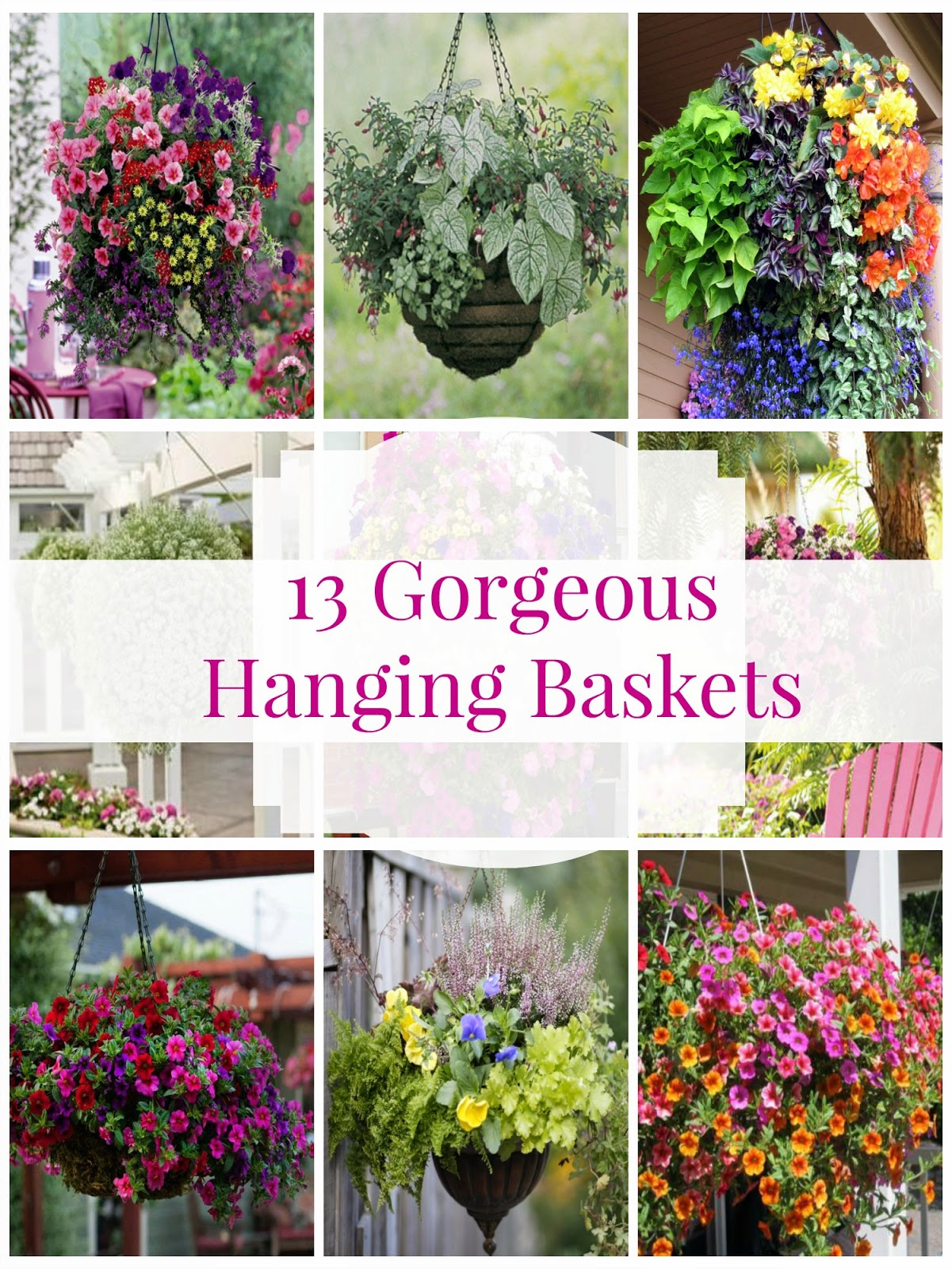 Hanging Flower Baskets