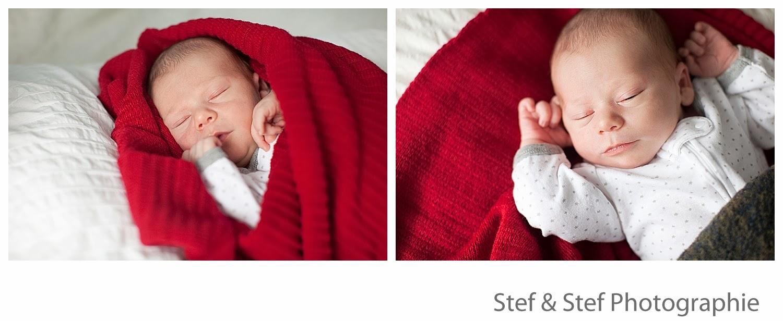 photographe nouveau né montréal