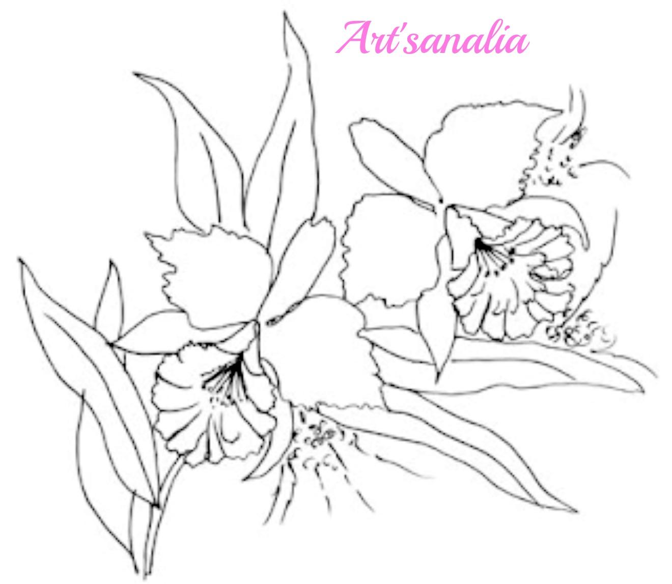 Único Orquídeas Para Colorear Ornamento - Dibujos Para Colorear En ...
