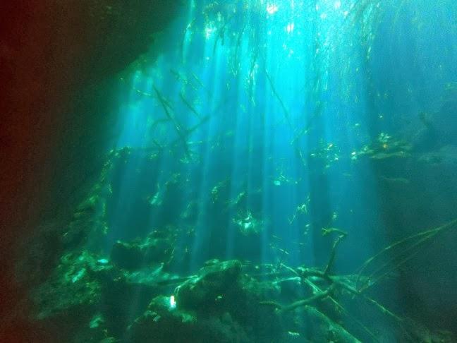 Cenote Ponderosa. Javier Girón
