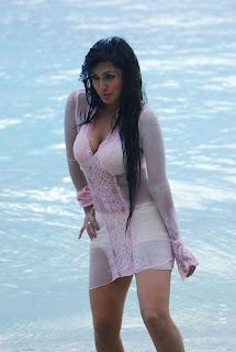telugu tollywood bollywood indian actress heroines hot