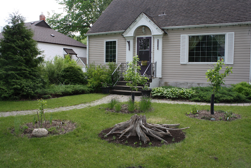 Veggie delight a manitoba garden edible front yard for Easy care front yard landscaping