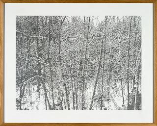 Richard Müller: Winterzeichnung, Randen 1