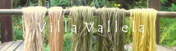villavallela