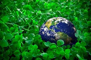 დავიცვათ ბუნება