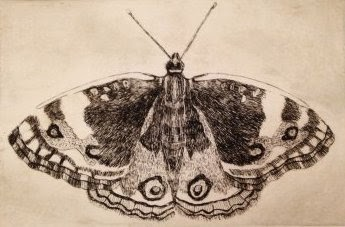 Small Butterfly Etching