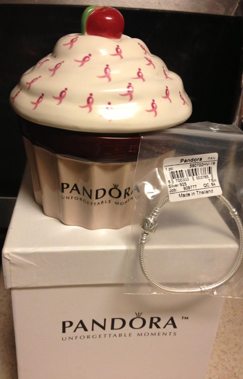 LoveMy2Dogs Pandora Bracelet and Jewelry Box Giveaway