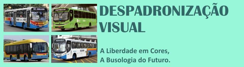 Despadronização Visual - A liberdade em cores - A  Busologia do futuro
