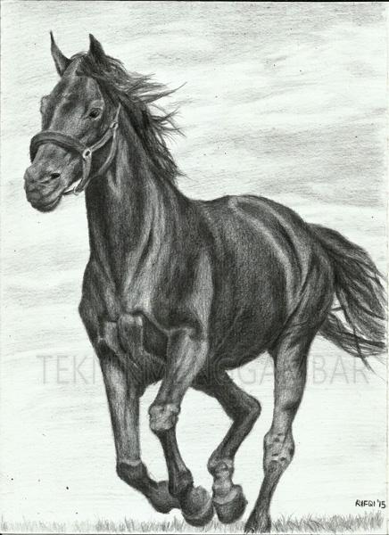 Teknik Menggambar Kuda Dengan Pensil Teknik Menggambar