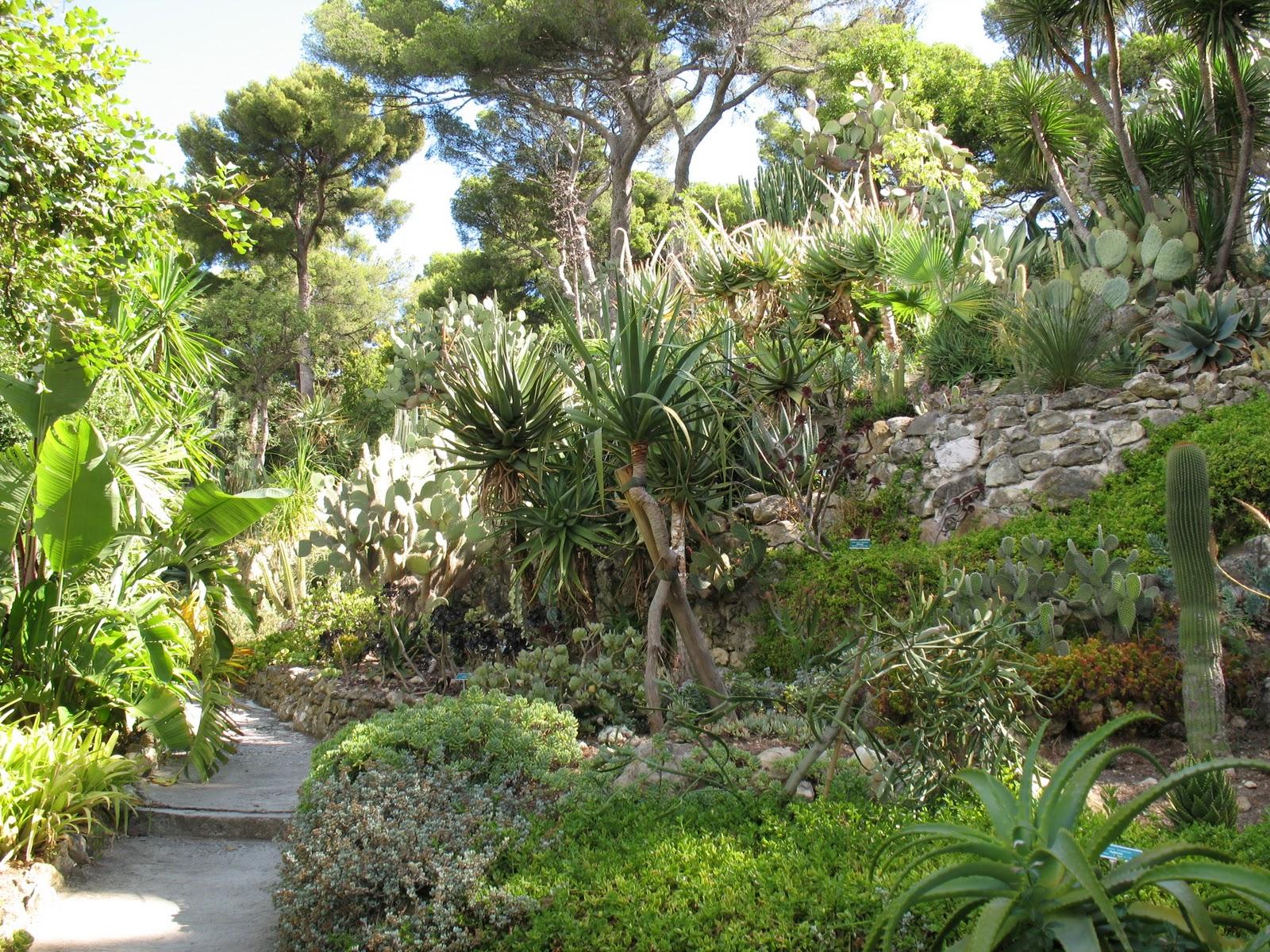 Roses du jardin ch neland villa ephrussi de rothschild - Jardin de chen ...
