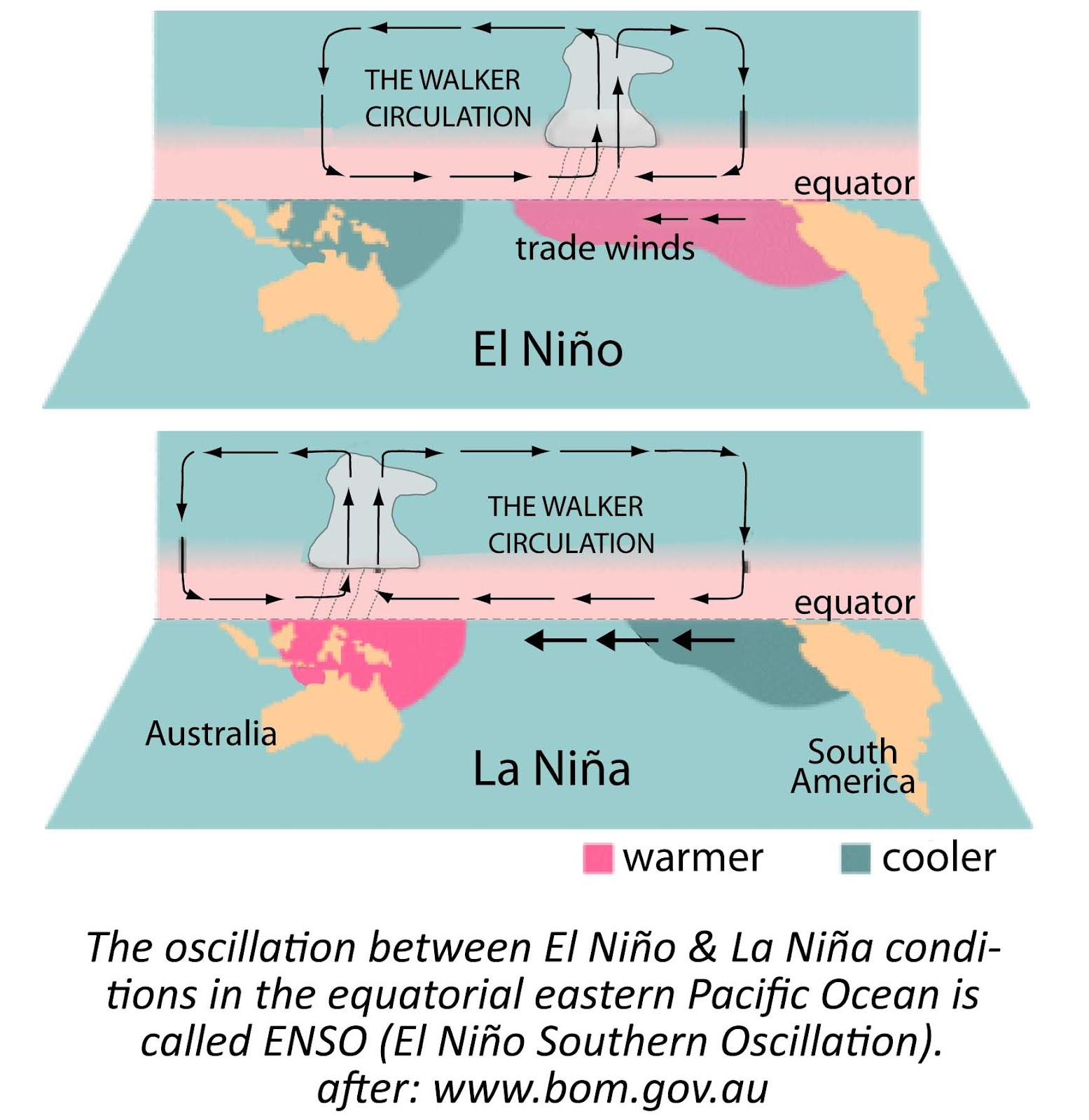 Insights and Reflections: EL NIÑO and LA NIÑA Phenomena