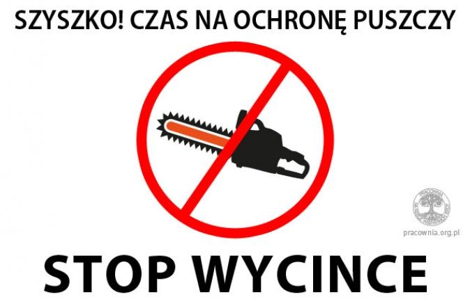 solidarni z puszczą białowieską