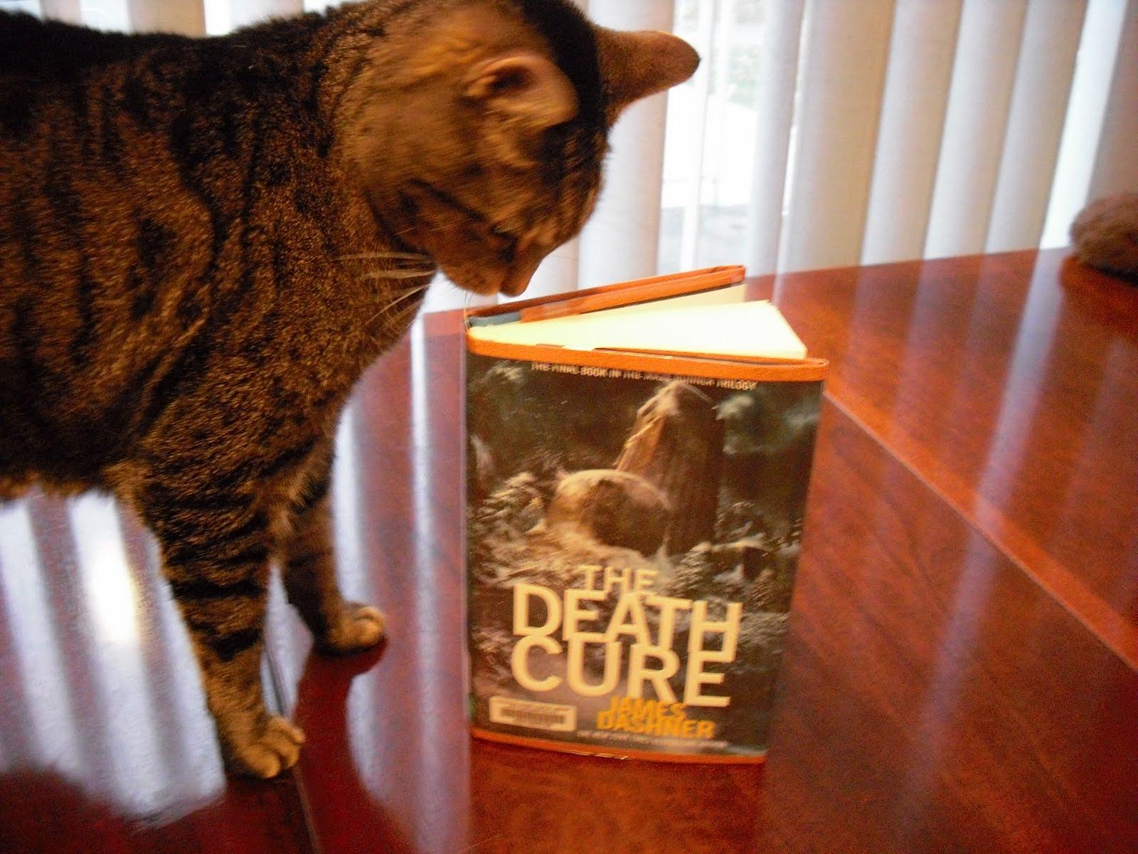 the death cure by james dashner essay Series: maze runner author: james dashner read online free books: the maze runner (the maze runner #1), the scorch trials (the maze runner #2), the death cure.