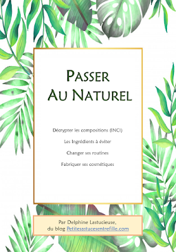 Passer au Naturel, mon premier ebook