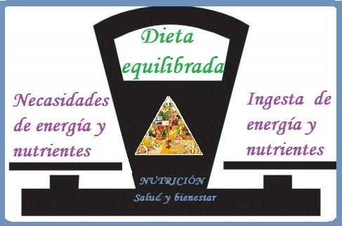 Nutrici n qu se entiende por alimentaci n saludable for Que se entiende por arquitectura
