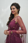 Hamsa Nandini at Bengal tiger audio-thumbnail-9