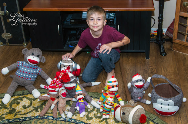 Sock monkey collection, 365 photo project, Lisa On Location photography