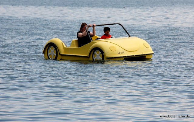 Trettboot auf dem See Käfer