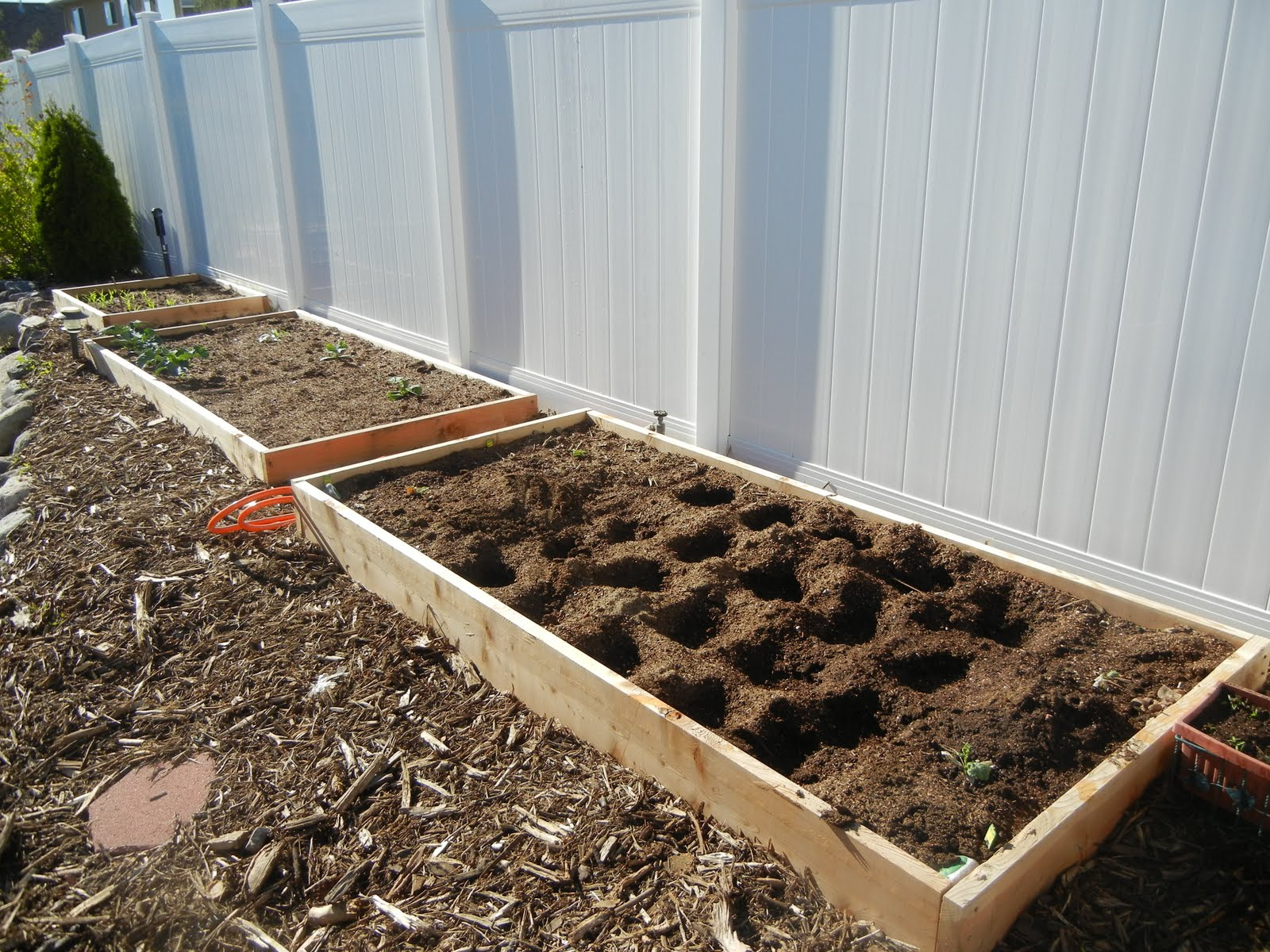My Square Foot Garden Plan-2011   Deals to Meals