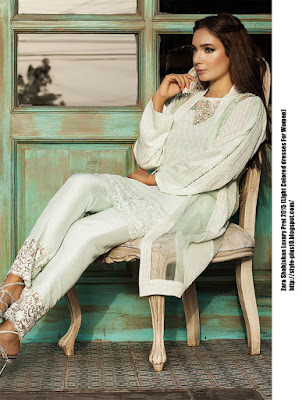 am-54-light-green-organza-jacket-from-zara-shahjahan-luxury-pret-2015