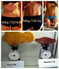 fat, muscle, weight loss, transformation, motivation, fit mom, shakeology, bikini season, summer slim down