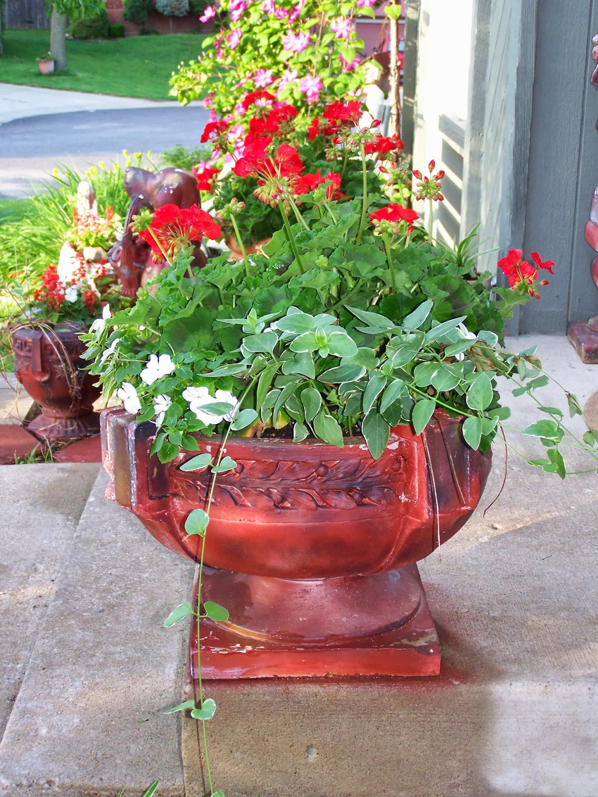 tell me a story geraniums
