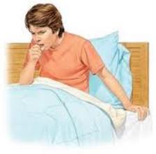 Obat Alami Penyakit Batuk Berdahak