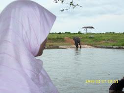 edisi Lampung
