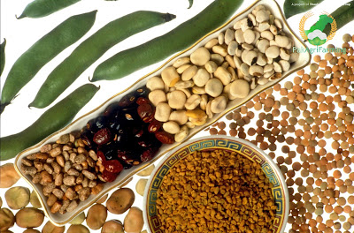 Seeds of pulses