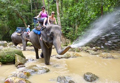Koh Samui Excursion. A thing to do in Koh Samui Elephant Trekking trip in Koh Samui at Namuang Waterfall No.1 Camp. Enjoy trip for couple or family. Namuang Waterfall No.1 is 18 meters high waterfall from the cliff in the jungle of Namuang. ทัวร์เกาะสมุย ขี่ช้างชมสวนยางหรือสวนผลไม้ บริเวณน้ำตกหน้าเมือง 1 蘇梅島騎大象