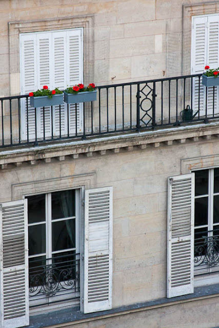 shuttered windows and window boxes in Paris