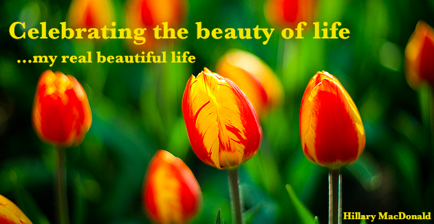celebrating the beauty of life