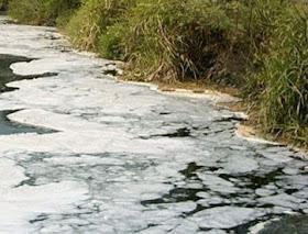 Ekosistem Dan Ekologi Cara Mengatasi Pencemaran Air Berawal Dari Diri Sendiri