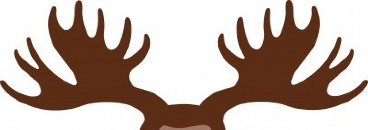 elk antlers graphic - photo #19
