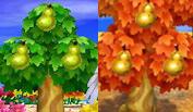 [Guía] Las frutas Peras